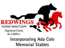 Redwings Horse Sanctuary image